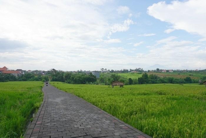 Canggu-Shortcut-from-Batu-Bolong-to-Berawa